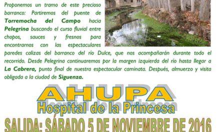 Excursión Senderismo – Primavera en Las Cárcavas de Burujón – 25 Marzo